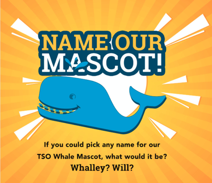 Name our Mascot Contest